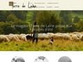 laine de mouton isolation en Auvergne