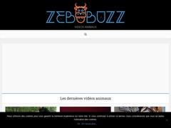 Où voir des vidéos d'animaux qui font le buzz ?