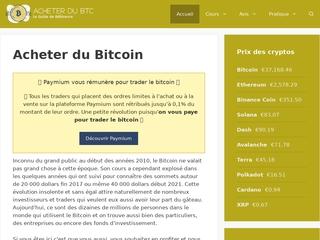 Pourquoi le Bitcoin est-il aussi prisé ?