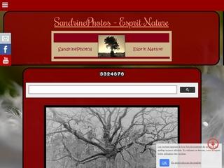 Galerie photos prises à Bouresse et au hasard de mes ballades Poitou-Charentes, les plus anciennes maisons de Bouresse, araignées, insectes, faune et flore, ciel, chasse,arbres, gourmandises