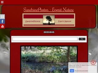 <p>&nbsp;<span>Le site SandrinePhotos Esprit Nature a &eacute;t&eacute; cr&eacute;&eacute; pour faire d&eacute;couvrir l'histoire et le patrimoine de la commune de Bouresse ainsi que la richesse de la faune et de la flore du Sud-Vienne.</span></p>