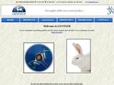 www.rabbitanti.com