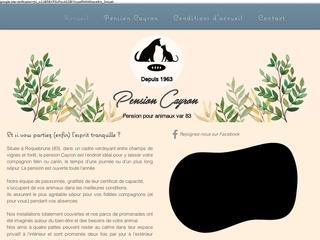 Pension Cayron chiens et chats