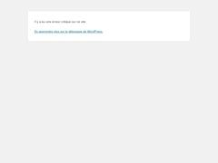 Détails : Hébergement site web