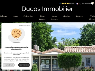 Ducos  Immobilier