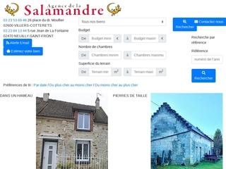 Agence de la Salamandre