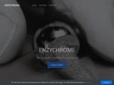 www.enzychrome.com