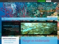 Détails : Ecole de plongée à Paris