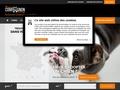 Noe17 - Annonce animaux (acheter, vendre, adoption, elevage) Annonces chien, chat - cheval a vendre