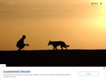 Éducation Canine 06