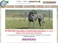 Barf  France     Spiruline