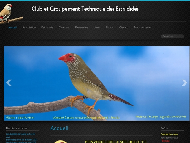 Club and technical grouping of estrildids