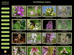 Orchidees Isere