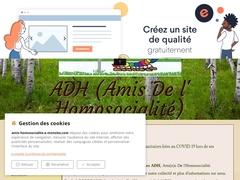Les Ami(e)s de l'Homosocialité