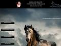 Equi-libre OSTEOPATHE Equin