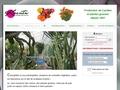 Ets. Kuentz : Le Monde des Cactus