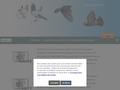 PiRcube - logiciel de gestion colombophile