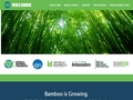 World Bamboo Organization
