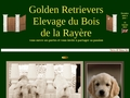 Golden Retriever du Bois de la Rayère vous ouvre ses portes et vous invite à partager sa passion