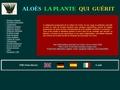 Aloe info : Informations sur ses vertus et ses bienfaits