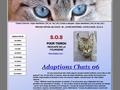Adoptions Chats 06
