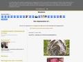 Arnaud Veto: Demarrage du blog vétérinaire arnaud veto