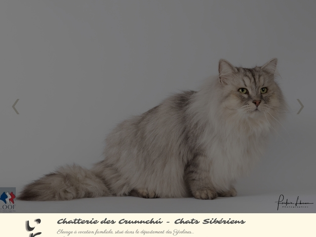 Chatterie des Crunnchu