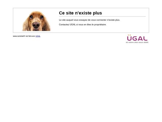 Canisball éducation canine