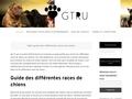 GT Recherche Utilitaire