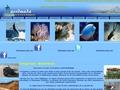 L'annuaire pour tout savoir sur Diego Suarez et le nord de Madagascar : histoire, géographie de Diego Suarez, et de Madagascar, toutes les informations touristisques sur les hôtels, restaurants, agenc