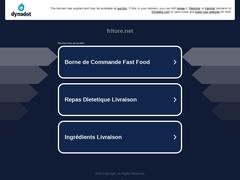 Friture - Média régional des possibles en Midi-Pyrénées
