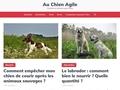 Au Chien Agile