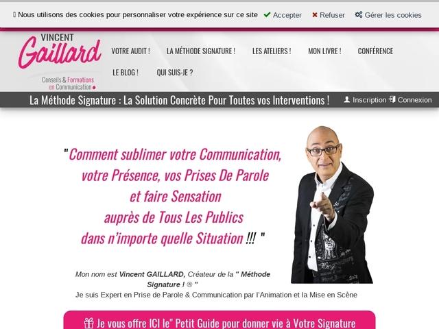 Vincent Gaillard, Coach Artistique