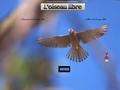 L'Oiseau libre