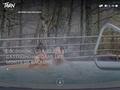 Tourisme Tarn, Sud-Ouest en Midi-Pyrénées