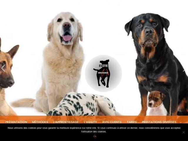 Elite Dressage