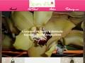 Fleurs d'Anis