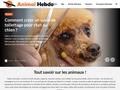 Animal Hebdo
