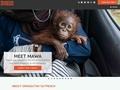 Site de l'association Orangutan Outreach