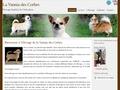 Chihuahuas de la Vannia des Corbes