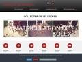 Collection VéloSolex