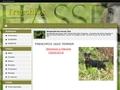 Jagd Terrier de  Frenchfox