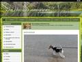 Elevage Du clos des amoureux - Fox Terrier Poil Dur