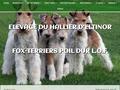 Elevage du Hallier d'Eltinor de Fox Terriers Poil dur LOF