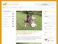 Club du Léonberg