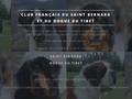 Club Francais du Saint-Bernard et Dogue du Tibet