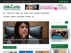 Presse fessionnelle des collectivités territoriales décentralisées