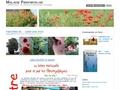 Fibromyalgie : une souffrance en pleine lumière / titre 2 : le journal d'une fibromyalgique