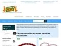 boutique ésotérique minéraux