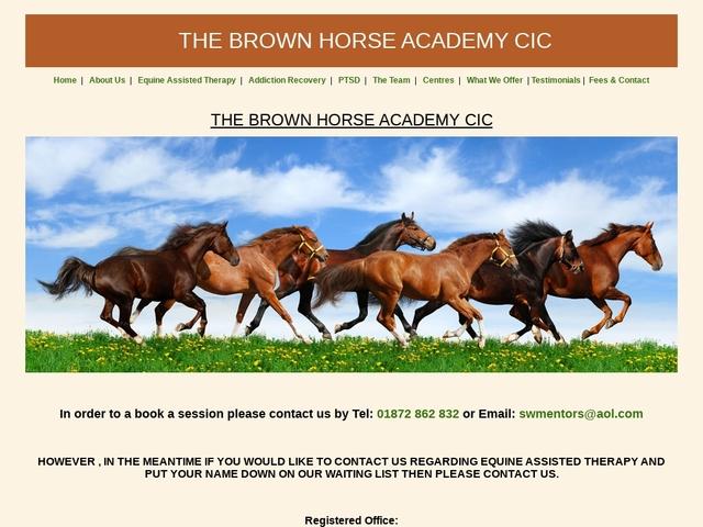 Brown Horse Academy